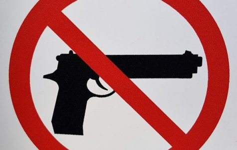 Should Firearms Be Permitted On Campus?