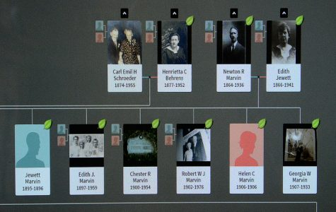 In progress is the Schroeder-Donlan family tree, that Eric Schubert, 16, of Medford Lakes, is currently working on,