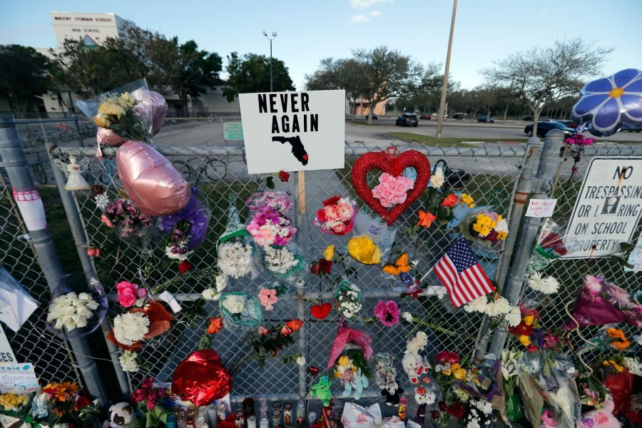 Letters To Stoneman Douglas: Coping After a Tragedy