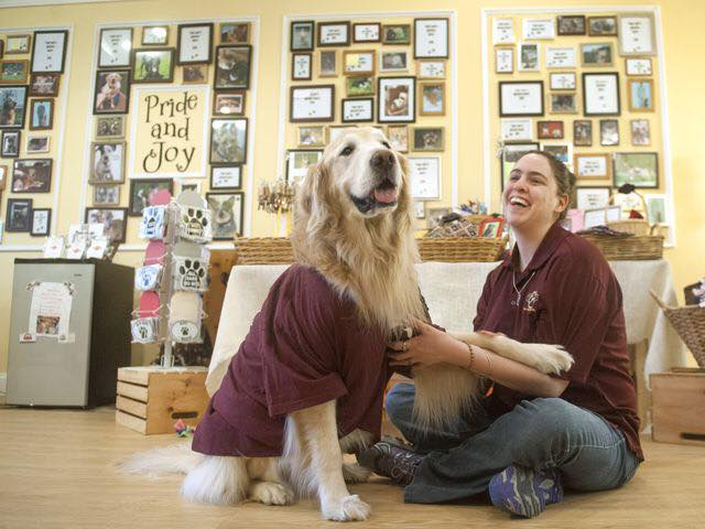 Pride Paws -A Medford Non-Profit That Gives Back To The Community